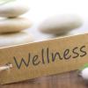 Conceptos hoteleros para el turismo wellness
