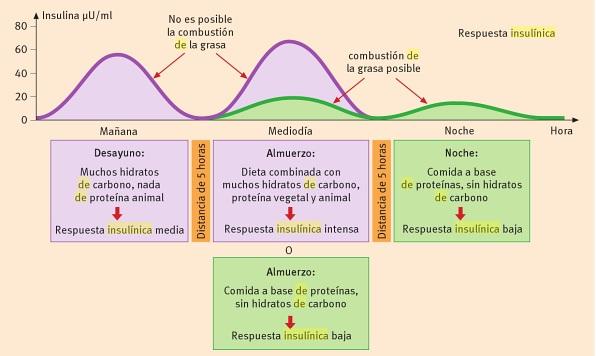 Disociacion-de-la-insulina