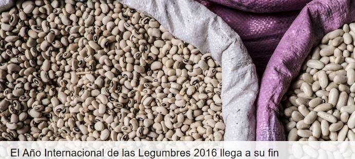 legumbres1